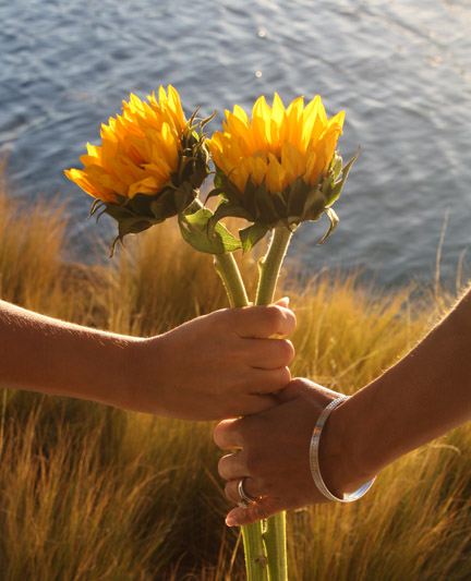 hands_holdingsunflowers